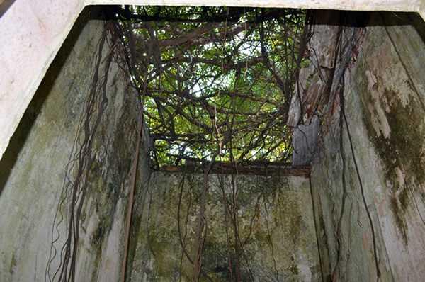 Ruínas de Paricatuba foto : Sérgio Mourão
