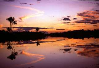 As Amazonas