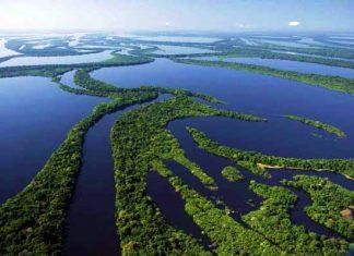 Vista aérea da Estação Ecológica de Anavilhanas, no rio Negro acima de Manaus, Amazonas, Brasil