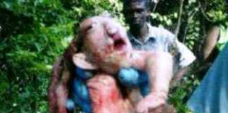 Animal com características humanas é abatido por caçador em Apuí