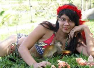 ''A monstruosidade da sapopema não intimida os madeireiros. Assim é o meu amor pelo Amazonas, não intimida ninguém, mas impõe respeito e admiração. As suas raízes estão fincadas no solo sagrado sugam os nutrientes para a sua sobrevivência, assim sou eu, assim é o meu amor pelo Amazonas. Sem ele eu não teria a força e a garra para enfrentar as adversidades. Diante do meu oponente sou grande e forte, gigantesca e indefesa.'' Yana Bentes