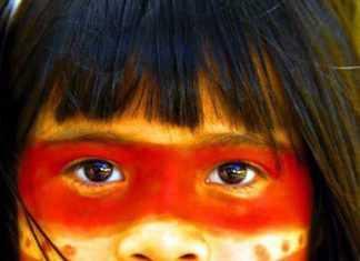 19 de abril foi o 1º Congresso Indigenista Interamericano, em 1940, no México .