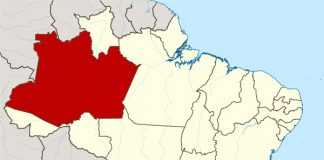 101 coisas pra fazer no Amazonas