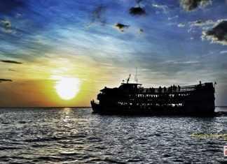 Site TripAdvisor destaca Manaus entre os 10 melhores destinos turísticos do Brasil foto : Risa Muggler
