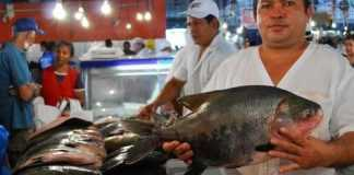 Cerca de 70% dos resíduos dos peixes podem ser reaproveitados, reduzindo o impacto ambiental muitas vezes gerado pela falta de destino a esse material (Luiz Vasconcelos)