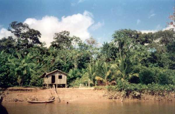 A ocupação e povoamento do Amazonas deu-se de maneira esparsa, por conta da vegetação densa. Na foto, casa de caboclo na beira do rio