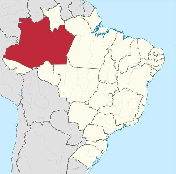 A história do Amazonas
