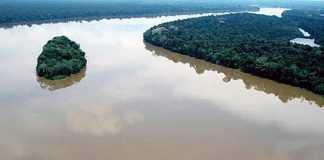 Meu rio de buriti