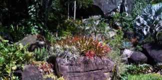 Lenda Urbana - Os espíritos dos cemitérios indígenas
