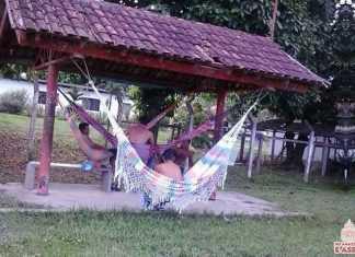Novas Paradas De Ônibus em Manaus para a Copa do Mundo