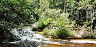 Cachoeira Santa Cláudia, Presidente Figueiredo Foto : Laély Fonseca
