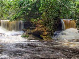 Foto: Anfremon D'Amazonas