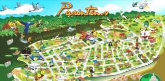 Mapa Ilustrado de Parintins