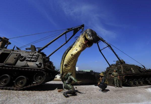 A maior cobra do mundo ja capturada pelo exercito (10)