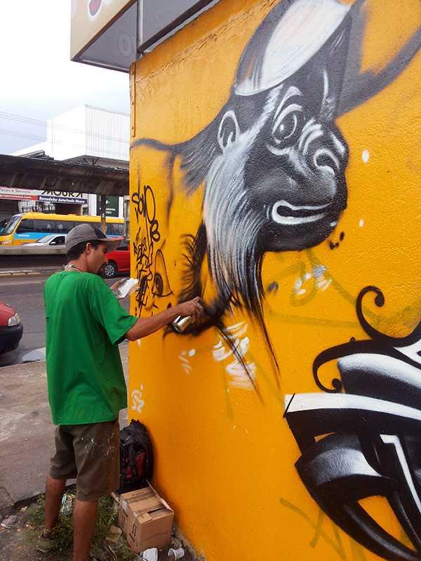 BMC Tintas Suvinil 2013 grafite manaus (4)
