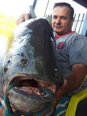Peixe foi doado para a Apae de Alta Floresta (Foto: Nativa News)