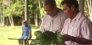 'Paisagens do Conhecimento', do Professor Moacir Biondo