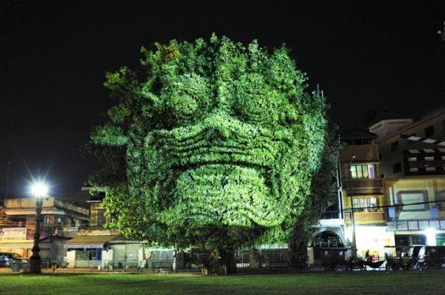 Projeção sobre árvores / Divulgação