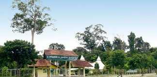 Jardim Botânico Adolpho Ducke