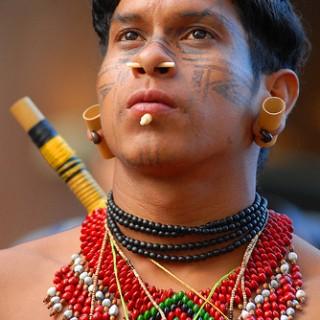 Lenda Amazônica da Piripirioca