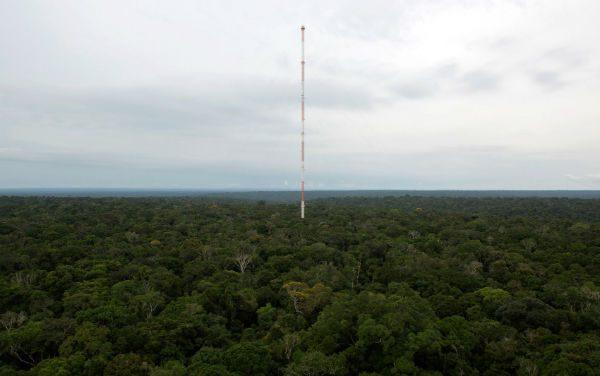Torre mais alta do mundo é inaugurada na Amazônia