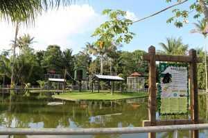 O local onde ficam os macacos.