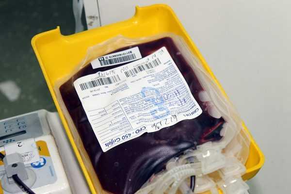 Caboco Bom de Sangue (27)