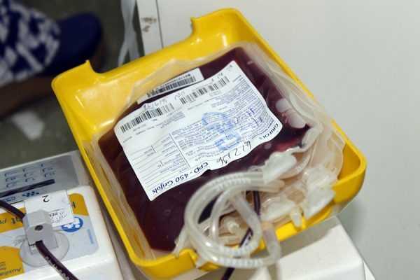Caboco Bom de Sangue (28)