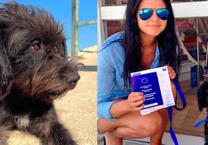 Estudante viaja milhares de quilômetros e adota cadela que a salvou de um estupro
