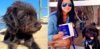 Estudante viaja milhares de quilometros e adota cadela que a salvou de um estupro
