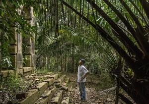 Homem vive em cidade fantasma no Amazonas