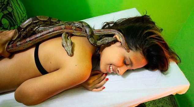 conheca-a-massagem-corporal-feita-com-cobras-vivas-1