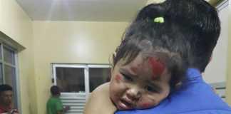 Esposa e filha do presidente do Boi Caprichoso sao agredidas durante assalto