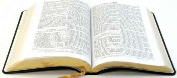 Vereadora quebra protocolo e se nega a ler a 'Bíblia' durante sessão na Câmara
