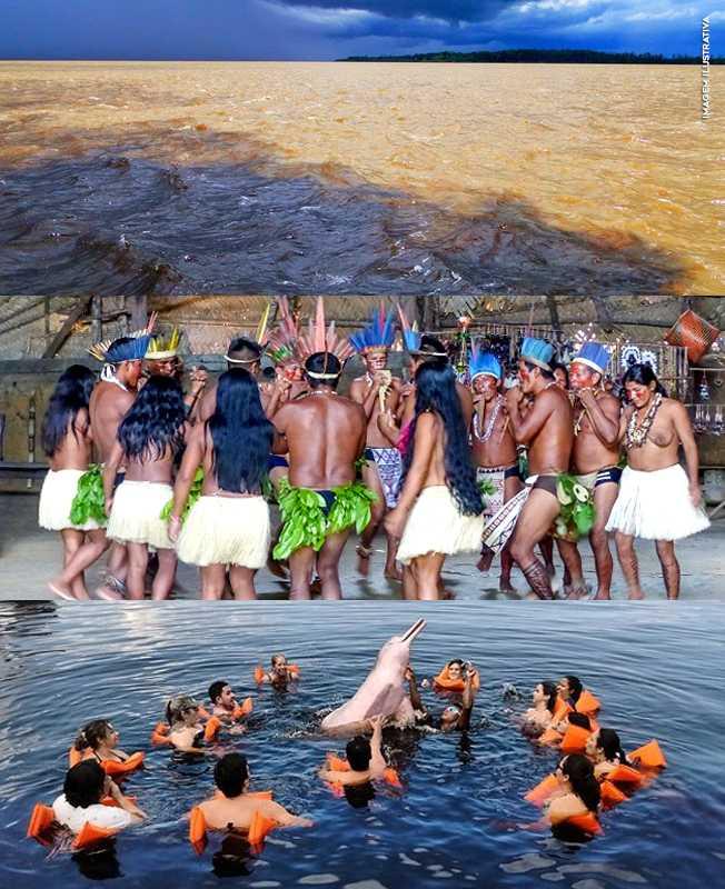 Passeio Turístico em Manaus : Encontro das Águas + Nadar com Botos +Visita Tribo Indígena