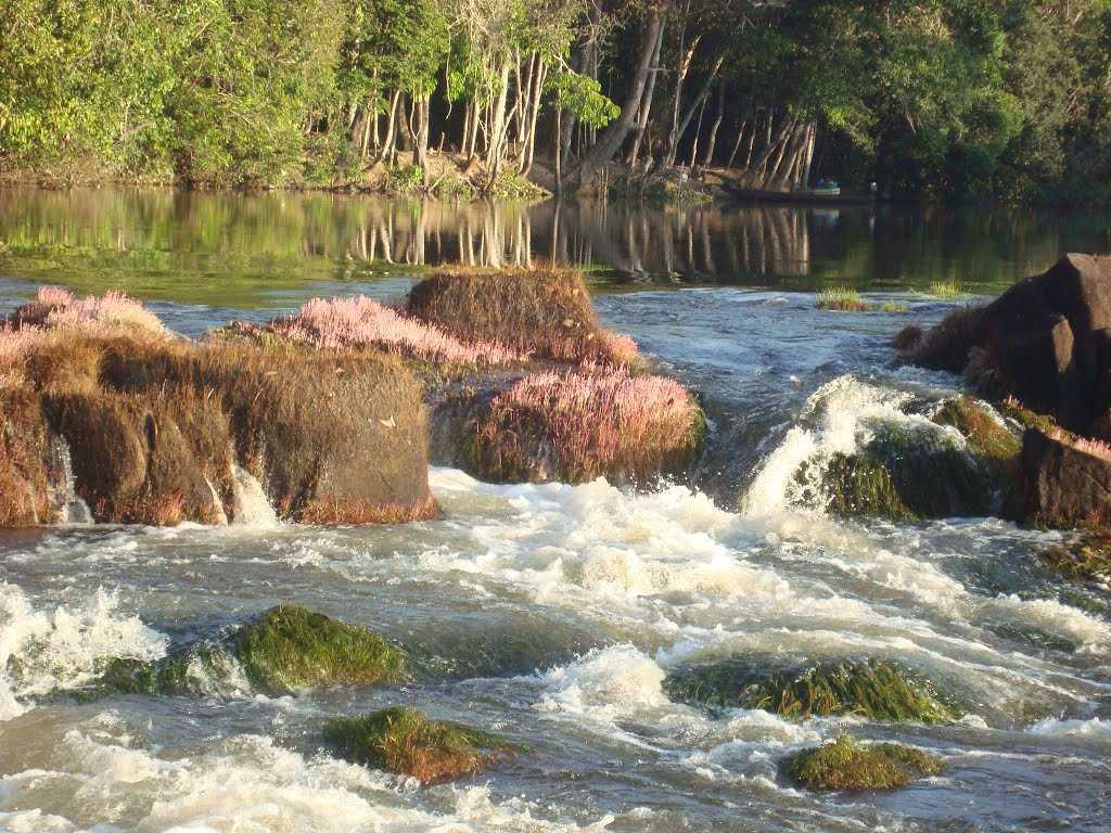 Cachoeiras do Rio Manicoré / Foto : Reprodução Internet
