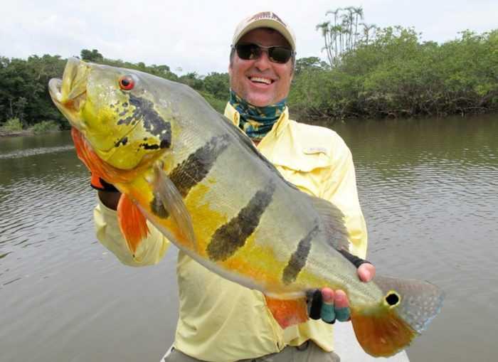 A cidade de Manicoré destaca-se internacionalmente por sua pesca esportiva, tais como a do Tucunaré e entre outros Peixes de água doce.A cidade de Manicoré destaca-se internacionalmente por sua pesca esportiva, tais como a do Tucunaré e entre outros Peixes de água doce.