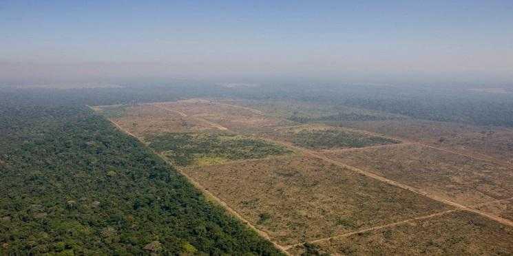 Noruega anuncia que fará corte de quase R$ 200 mi ao Fundo da Amazônia - Imagem de divulgação