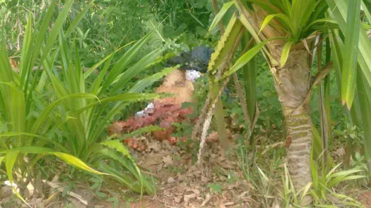 Taxista morto abandonado no Flamanal / Foto : Notícias do Amazonas