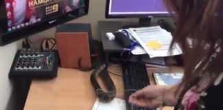 Cobra invade agência de notícias e assusta funcionários - Imagem: Reprodução do Youtube