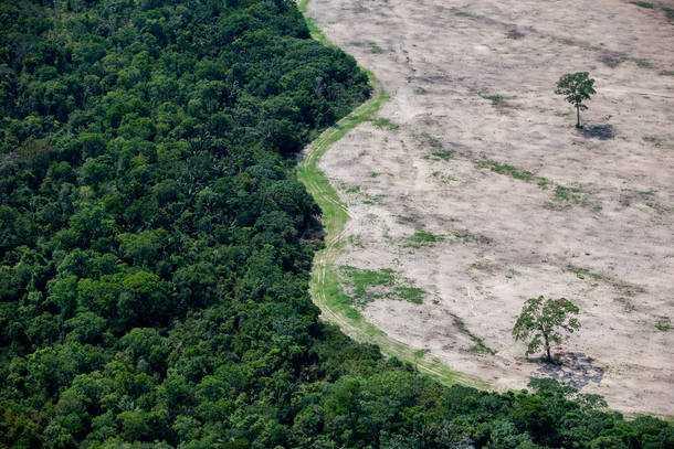 Governo Federal extingue reserva ambiental na Amazônia - Imagem: Foto: TIAGO QUEIROZ/ESTADÃO