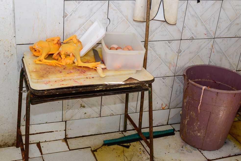 Frangos eram abatidos, depenados e pintados artificialmente-Imagem:Divulgação/Vigilância Sanitária de Boa Vista