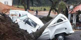 Vídeo de motorista dirigindo Kombi atingida por árvore viraliza na internet - Imagem: Reprodução Youtube