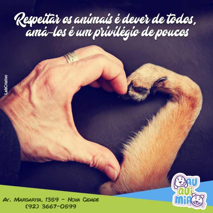 Dia Mundial dos Animais / Reprodução Facebook Auquimia Pet Shop e Consultório Veterinário
