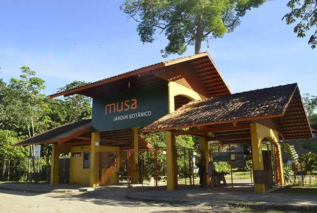 MUSA - Museu da Amazônia / Foto : Divulgação