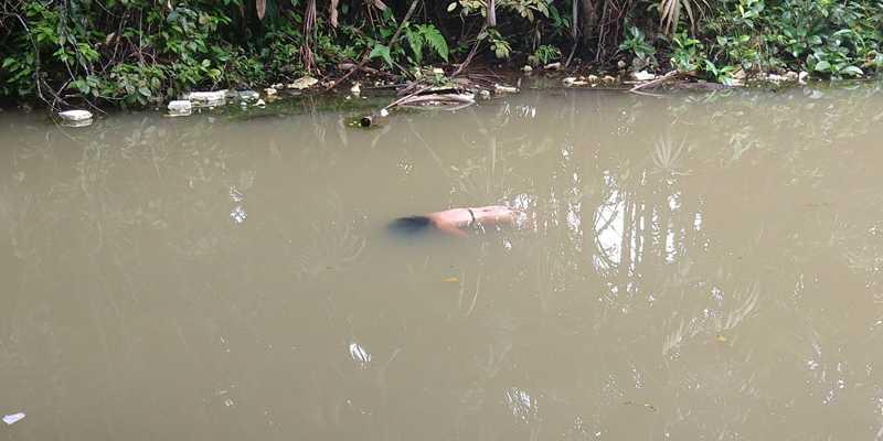 Corpo de mulher desaparecida é encontrado em lago de faculdade de Manaus - Imagem: Divulgação