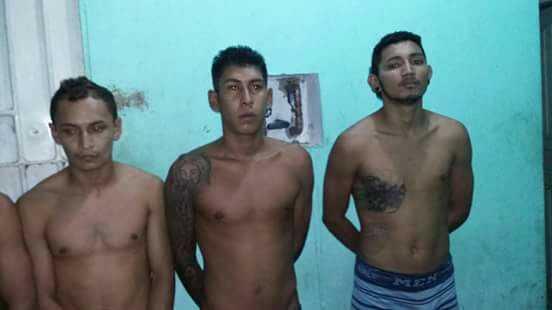 Polícia prende cinco por tráfico de drogas em Barreirinha no Amazonas - Imagem: PM-AM