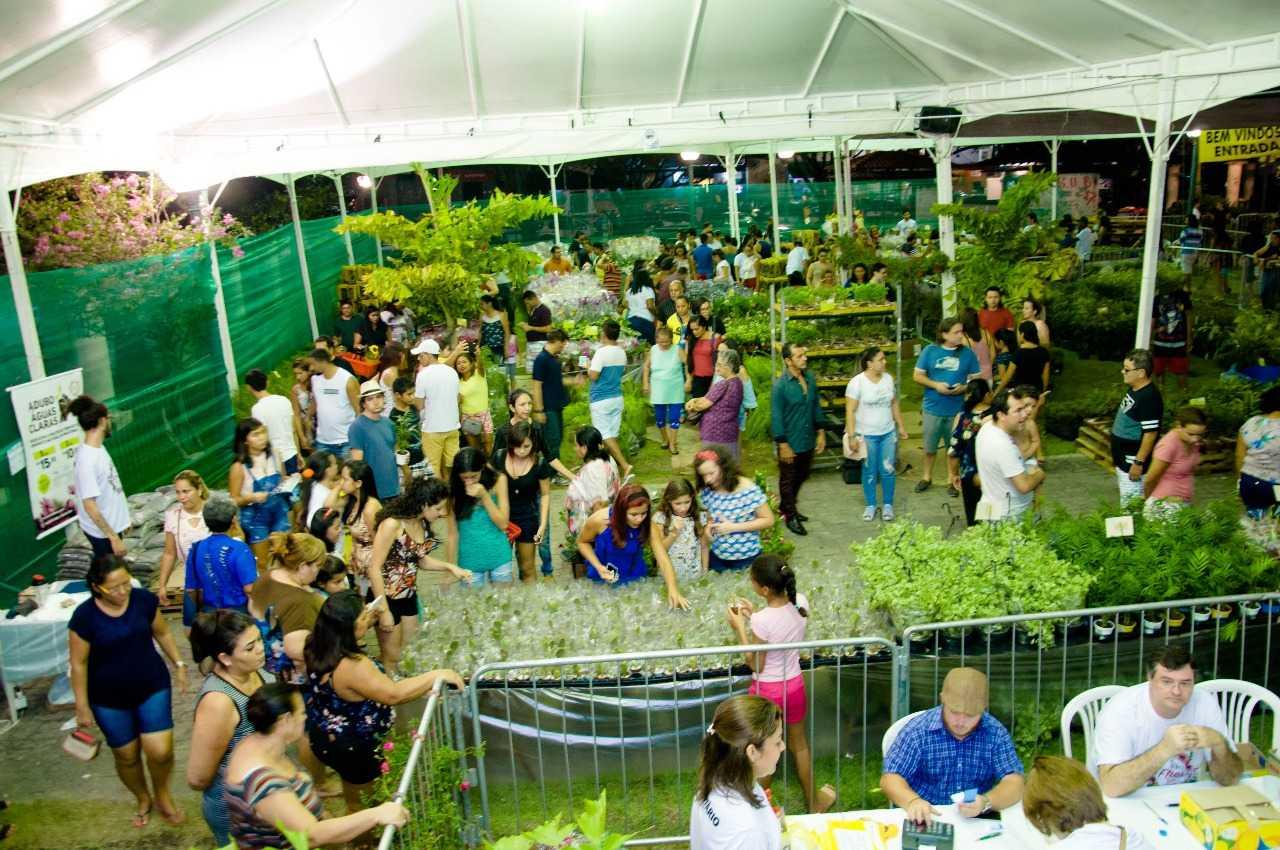 Programação do Final de Semana da Expo Flores - Feira de Holambra / Divulgação