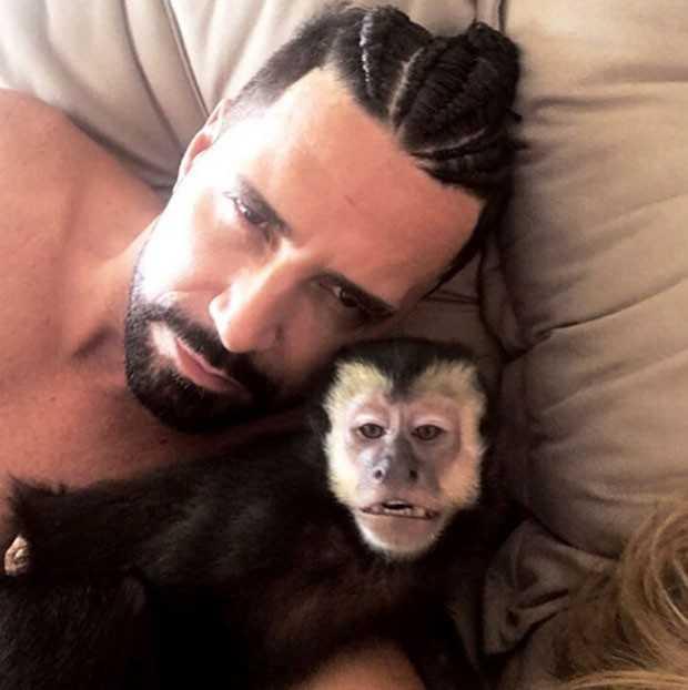 Macaco de Latino é morto brutalmente - Imagem: Divulgação