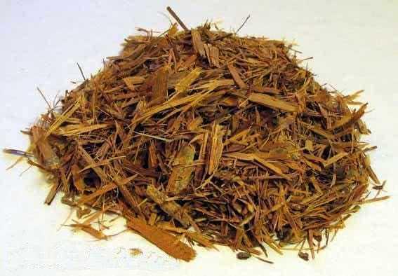Folhas de Catuaba Ingredientes: